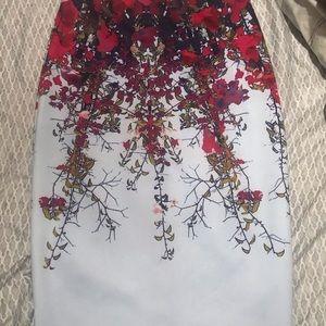 Ted baker beautiful skirt, lovely fit.